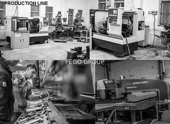 Pego Group (HK) Company Limited